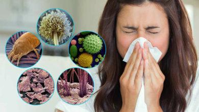 Photo of Аллергия на домашнюю пыль