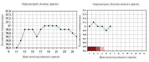 Базальная температура при эндометрите