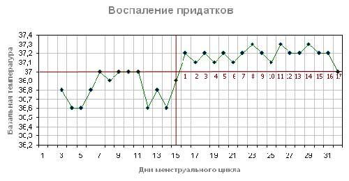 bazalnaya-temperatura-vospalenie-pridatkov