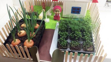 Photo of Детский огород на подоконнике