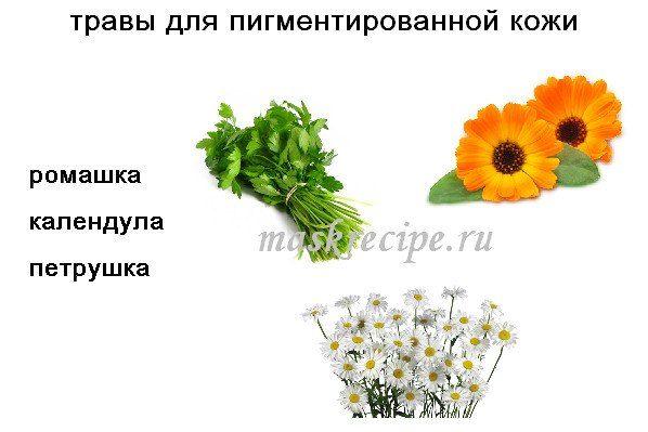травы против пигментации кожи
