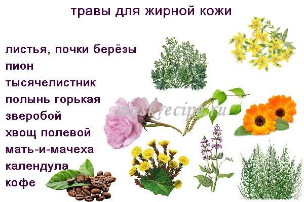травы для жирной кожи лица