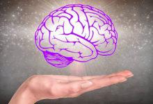 Photo of Как перезарядить свой мозг