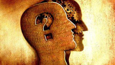 Тест «Благоразумие и сумасбродство?»
