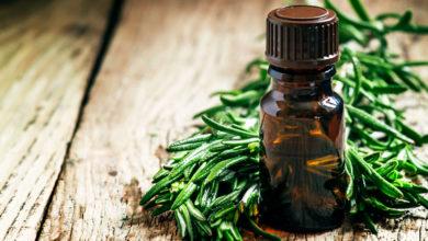 Эфирное масло чайного дерева: лечебные и косметические свойства